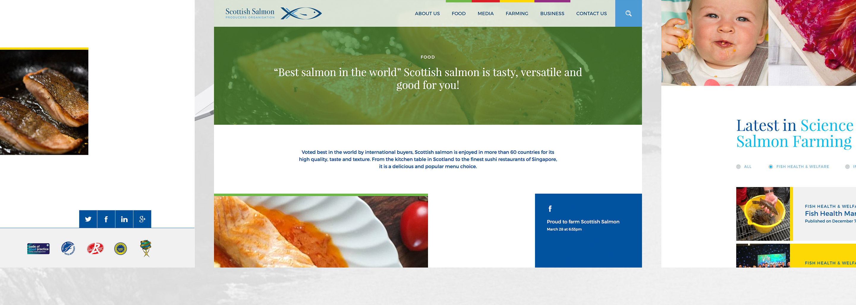 Scottish Salmon Producers Organisation responsive website